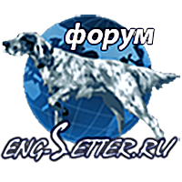 eng-setter-forum_150_w.png